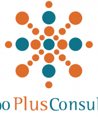 Plus Consulting Tax And Financial SAS