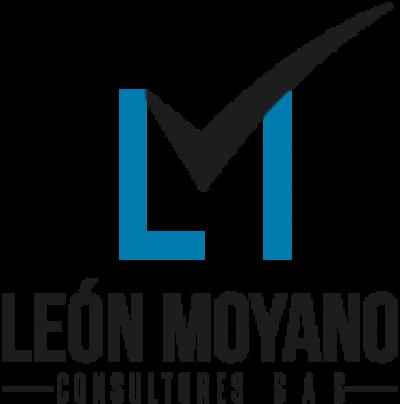 Leon Moyano Consultores SAS,  «LM Consultores SAS»
