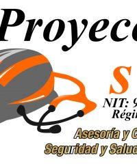 PROYECCION SST SAS